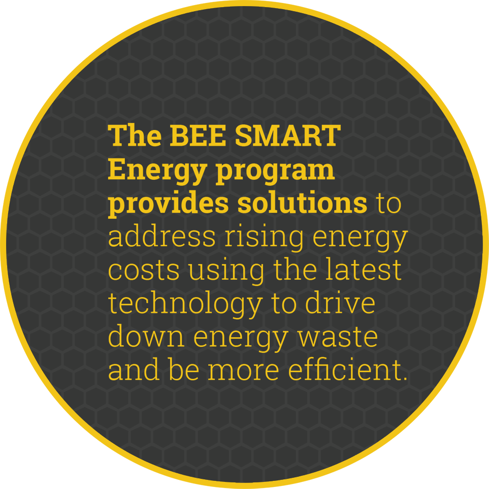 bee smart statement